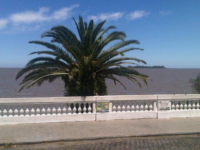 Blick auf den Rio de la Plata