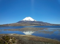 Volcan Parinacota reflect in the Lago Chungará