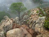 Kapstadt, Aufstieg zum Lionshead