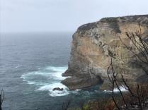 A walk through the jervis national park