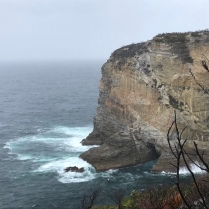 A walk through the jervis national park