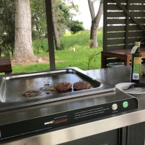 Open gas grill you can find at many places, just use and clean