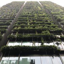 Urban Gardening mal anders: der vertikale Hochhausgarten