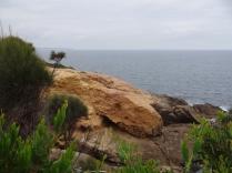 Bilima rock - locks like a turtle