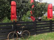 letzte Radtour an Māori Symbolen entlang