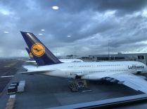 noch nie zuvor war ein Lufthansa Passagierflugzeug in Neuseeland